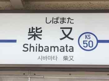 siba2.jpg